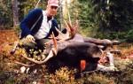 Rune Hallgren 1984